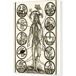 Canvas Print. Astrology and medicine, artwork
