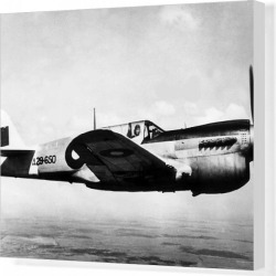 Canvas Print. Curtiss P-40N Kittyhawk IV -these progressively replace
