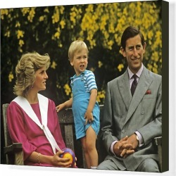 Canvas Print. Royal Family- Prince Charles, William and princess Diana