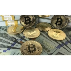 Cryptocurrency & Stock Trading Course
