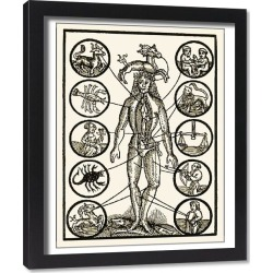 Framed Print. Astrology and medicine, artwork