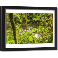Framed Print. Central America, Costa Rica. Monteve Verde, La Paz River, rain forest Credit as