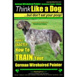 german wirehaired pointer german wirehaired pointer training think like a d