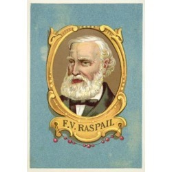 Giclee Painting: Francois-Vincent Raspail, French Physician, 24x16in.