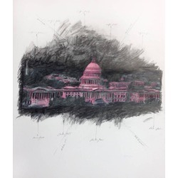 Grover Mouton, United States Capitol in Space, Pink, 2014