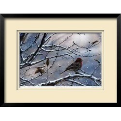 Limited Edition Framed Print: Winter is Upon Us by J. Vanderbrink: 21x28in