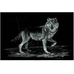 Limited Edition: Wolf on Alert by Robert Pow: 14x20in