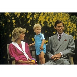 Photograph. Royal Family- Prince Charles, William and princess Diana