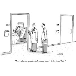 "Premium Giclee Print: ""Let's do the good cholesterol, bad cholesterol bit. - New Yorker Cartoon by Tom Cheney: 12x9in"