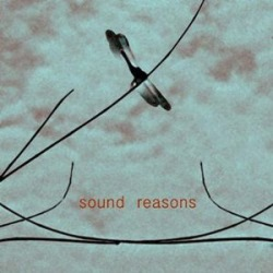 Sound Reasons (T0) / Various