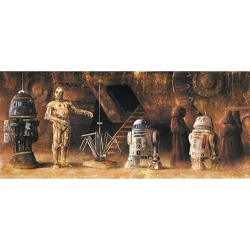 Star Wars Can You Speak Bocce by Akirant Canvas Giclee Art