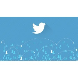 Twitter Followers: Get 100 Twitter Followers in 48 Hours
